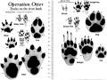Operation Otter Mammal Footprint Chart